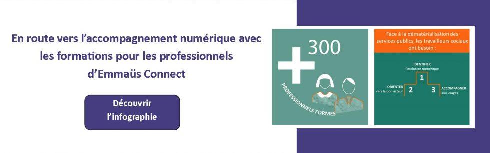 Infographie formations pour les professionnels